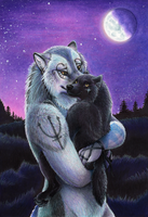 Navigating the Stars by Yote