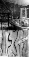 Behind the Wall of Sleep.. by Art2mys