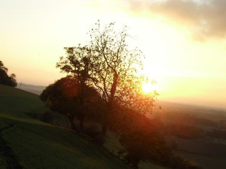 farthing common sunset by alstream