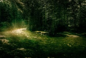 Foggy Forest River by Beholdentolove