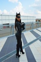 Catwoman 02 by KillerGio