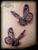 3d butterflies by state-of-art-tattoo