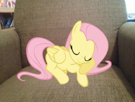 Fluttershy Sleeping on my chair by SonicRainBoomFTW