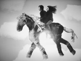 Horse-riding in the air by animal-liberation