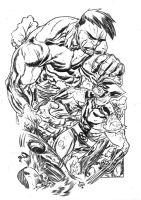 hulk vs wolverine by illustrated1
