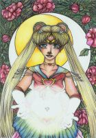 ++ Sailor Moon ++ by CathM