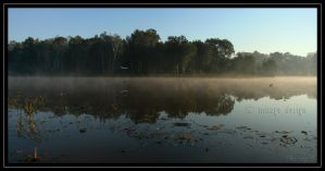 Morning Mist, Nudgee Waterhole by jane-mirage