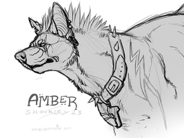 Amber CP by Serphire