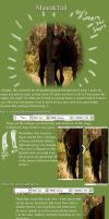 Mane and Tail tutorial by Runway-Optimist