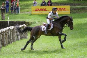 3DE Cross Country Water Obstacle Series IV/17 by LuDa-Stock