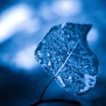 Blue by As-The-Stars-Align