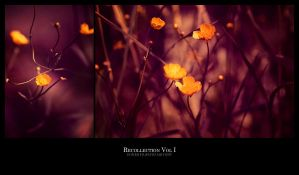 1416 - Recollection Vol I by boxx2genetica