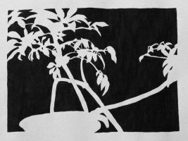 Negative Space of a Plant by denalim