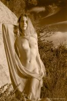 Gracie in Sepia by Quixotegraphics