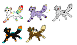 Sparkle kitten adopts by Storm-adopts-13