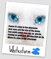 Whitestorm by Dreamcatcher26