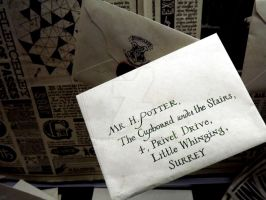 Mr H Potter, The Cupboard Under The Stairs by HollyVampasaurous