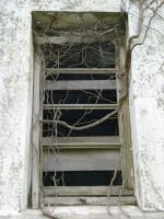 Nature take off anbandonned rectory's window by The-Underwriter