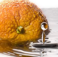 Washing Common Orange by Sevato