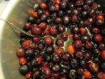 Cranberries Before Sauce by Windthin