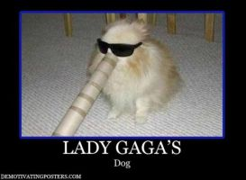 Lady Gaga's dog by Dessiekisses
