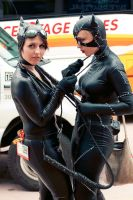 Catwomen by gottabekittenme