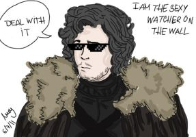 Jon Snow - Deal with it by Nymstark