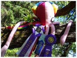 The Grand Champion by BelleBoyd