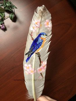 Bluebird Feather by BrandyWoods