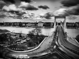 the bridge by Trifoto