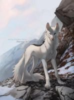 montane by Orphen-Sirius