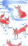 4 red foxes by Lahara