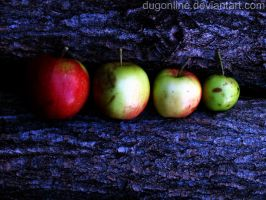 Apple WP 001 by dugonline