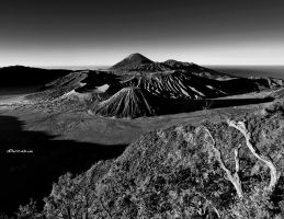 Bromo on my BW eyes by hirza