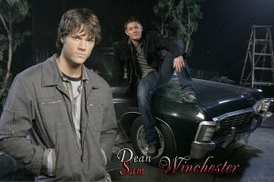 Dean and Sam Winchester by RoseHathaway24