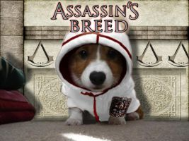 Assassin's Breed by GainesHall