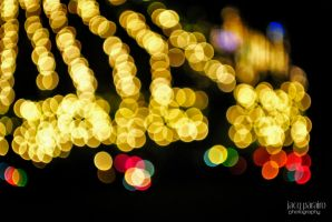 Season of Bokeh 2 by isangkilongkamera