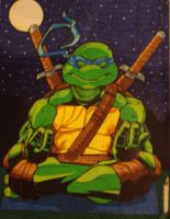 Leonardo's Meditation by Ryan-J-Miller