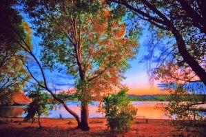 Dreamy Willow Lake. by MindlessKitteh