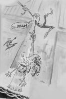 Whatever a Spider Can't by Mr-DNA