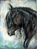 Friesian by astarvinartist