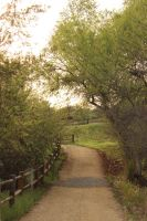 Rustic Path by Remember2fly1