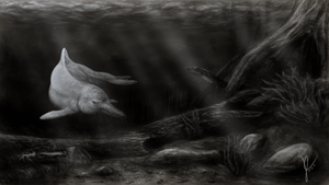 Amazon River Dolphin by gothams--reckoning