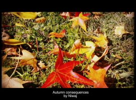 Autumn consequences by niwaj