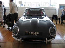 Jaguar 4of4 - aphasia100stock by aphasia100stock