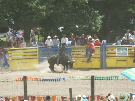 Rodeo85 by Jean3071