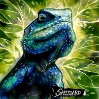 Agama Lizard by Skelizard