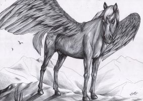 Commission - Black Pegasus - WIP by FuriarossaAndMimma