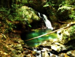 Picturesque Waterfall by Quynn