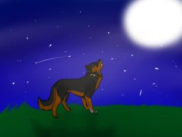 Wolfy in the moonlight .:request:. by Featherwishes